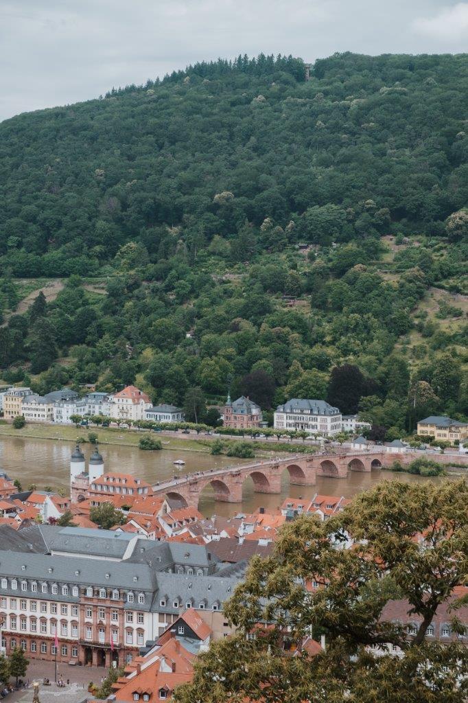 vjana meerman heidelberg palace (1)